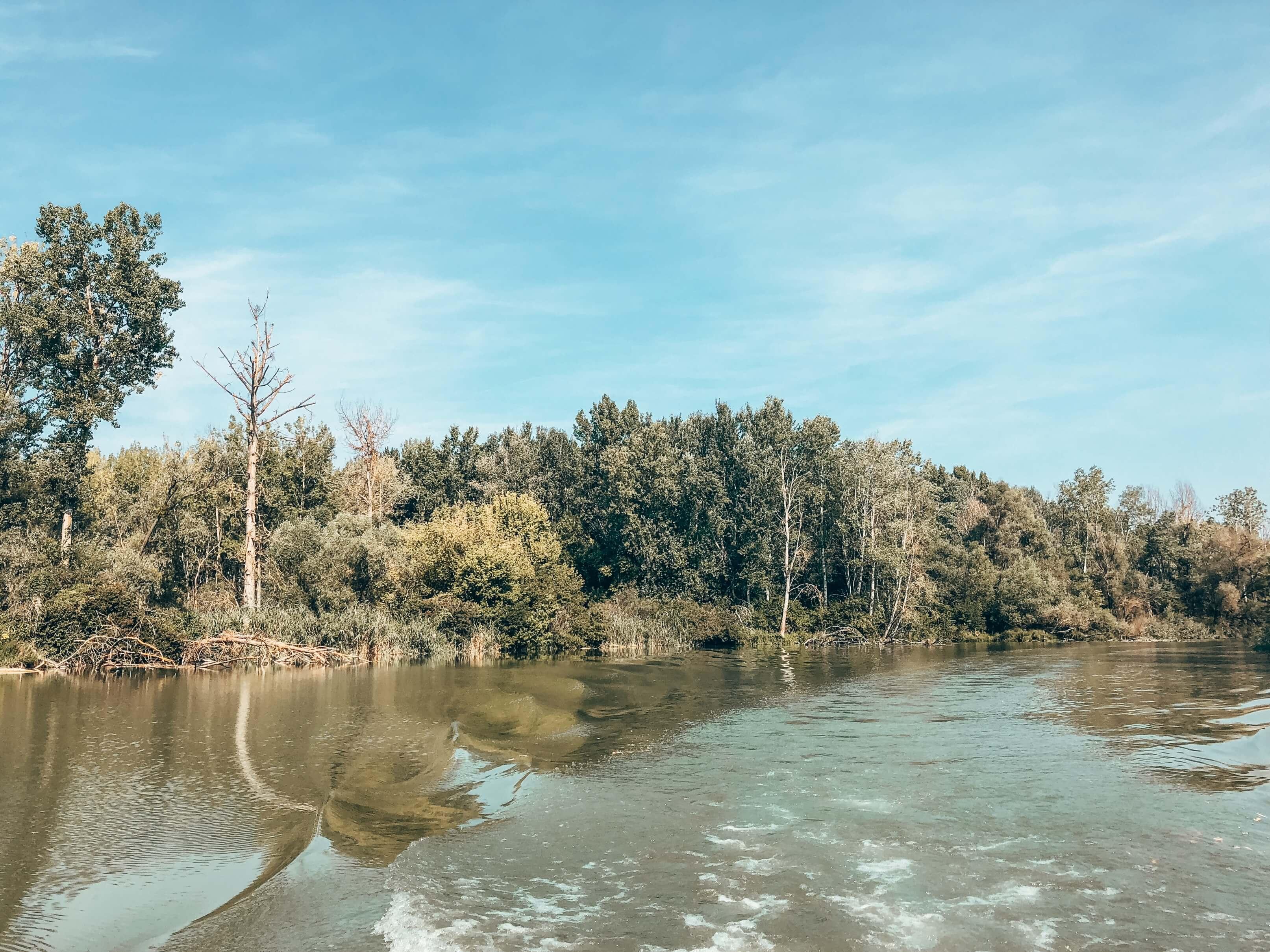 Žitný ostrov